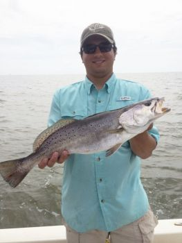 Fish hopedale trout where they cool off louisiana for Hopedale fishing report